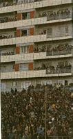 Glorious Wembley's